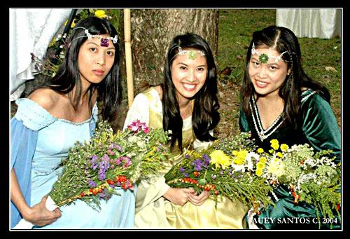 bridesmaidsinarow.jpg
